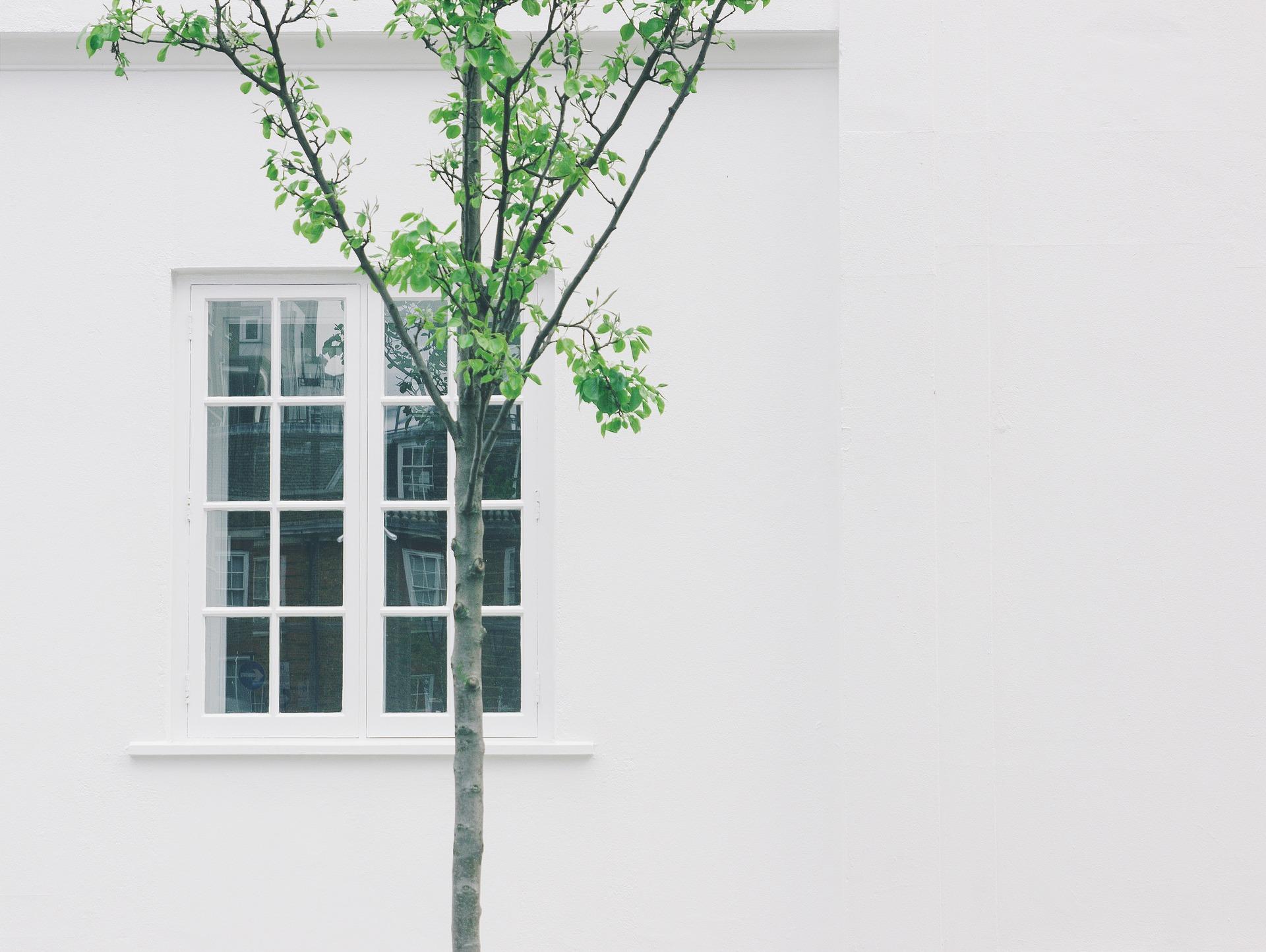 Verputzen Fassadenwand verputzen verputzen Gipser Verputzer Putzarten Haus verputzen Kosten Verputzen Preise Glattputz Kosten